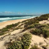 Home by the Sea, Plettenberg Bay Seaside accommodation; Keurbooms beach – a thing of real beauty