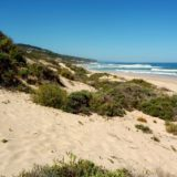 On Keurbooms beach you can walk for miles, and miles ….