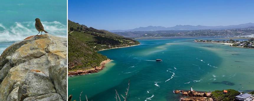 South African weather in Knysna and Plett.