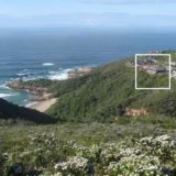 Blue Horizon, Knysna, Golf estate accommodation, perched on the edge of nature
