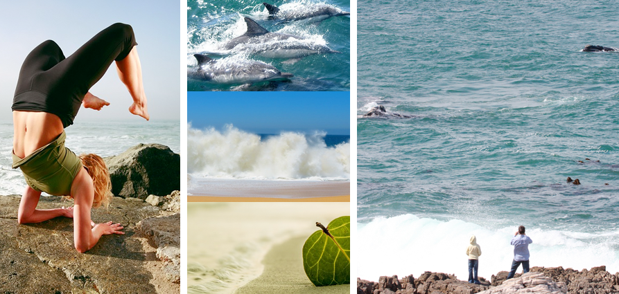 Plettenberg Bay Main Beach offers the perfect spot for beach-based hobbies PLUS the chance to catch a glimpse of a dolphin or whale pod (in season). This definitely rivals the best beaches in the world!
