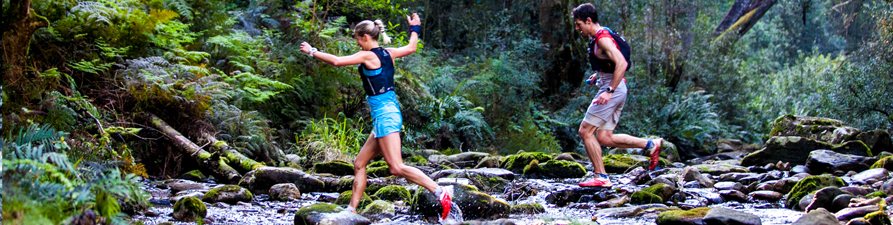 Knysna forests offer some of the best running, hiking and MTB trails in South Africa